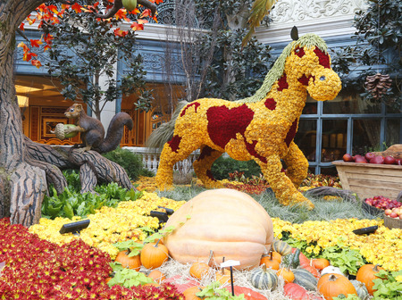 conservatory: LAS VEGAS, NEVADA - SEPTEMBER 25: Floral sculptures in the Conservatory of Bellagio Hotel and Casino on September 25, 2104 in Las Vegas