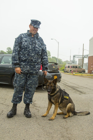 k 9: NEW YORK - MAY 22 Unidentified navy with K-9 dog providing security during Fleet Week 2014 on May 22, 2014 in New York