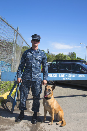 k 9: NEW YORK - MAY 25, 2014:  Unidentified navy with K-9 belgian shepherd providing security during Fleet Week 2014 in New York