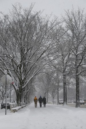 inconvenient: BROOKLYN, NEW YORK - MARCH 5, 2015: Snow at Ocean Parkway in Brooklyn, NY during massive Winter Storm Thor Editorial