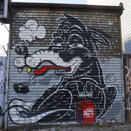 NEW YORK - March 24,2015: Mural art at East Williamsburg in Brooklyn. A mural is any piece of artwork painted or applied directly on a wall, ceiling or other large permanent surface Reklamní fotografie - 37990393