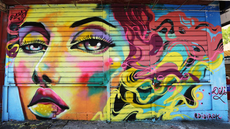 lower east side: NEW YORK - JUNE 16, 2015: Mural art in Lower East Side in Manhattan. A mural is any piece of artwork painted or applied directly on a wall, ceiling or other large permanent surface