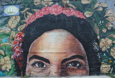 NEW YORK - JUNE 30, 2015: Mural art in Red Hook section of Brooklyn. A mural is any piece of artwork painted or applied directly on a wall, ceiling or other large permanent surface
