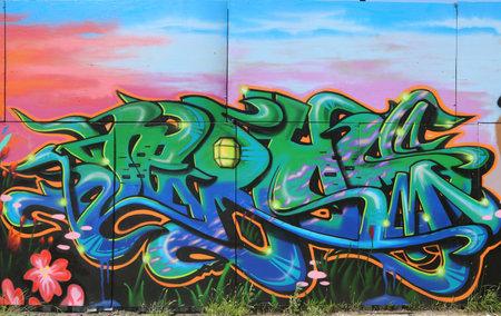 NEW YORK - AUGUST 1, 2015: Graffiti art at East Williamsburg in Brooklyn Redakční