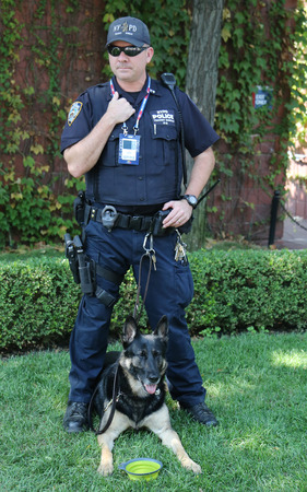 k9: NEW YORK - SEPTEMBER 9, 2015: NYPD transit bureau K-9 police officer and German Shepherd K-9 providing security at National Tennis Center during US Open 2015 in New York Editorial