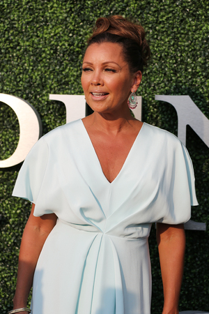 williams: NEW YORK - AUGUST 31, 2015 : American actress and singer Vanessa Williams at the red carpet before US Open 2015 opening night ceremony at National Tennis Center in New York
