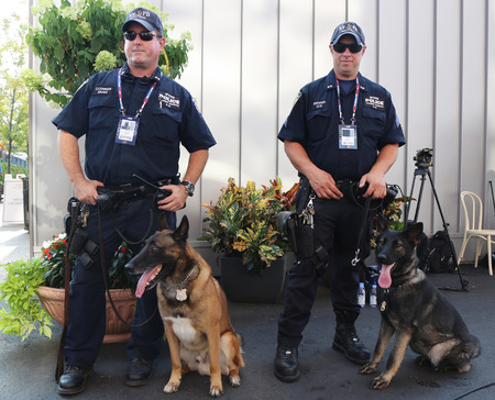 k9: NEW YORK - SEPTEMBER 1, 2015: NYPD transit bureau K-9 police officers and Belgian Shepherds providing security at National Tennis Center during US Open 2015 in New York Editorial