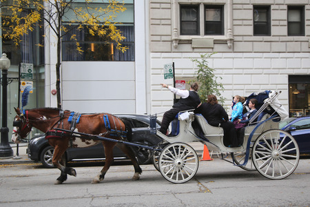 michigan avenue: CHICAGO, ILLINOIS - OCTOBER 24, 2015: Horse Carriage at Michigan Avenue in downtown Chicago