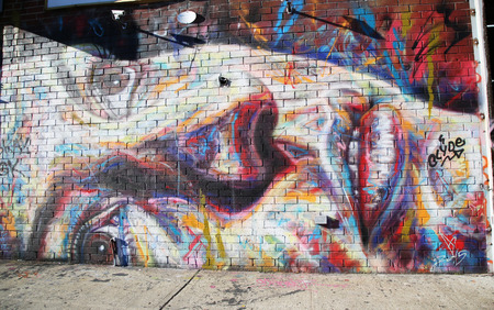 NEW YORK - DECEMBER 15, 2015: Mural art at East Williamsburg in Brooklyn. Outdoor art gallery known as the Bushwick Collective has most diverse collection of street art in Brooklyn