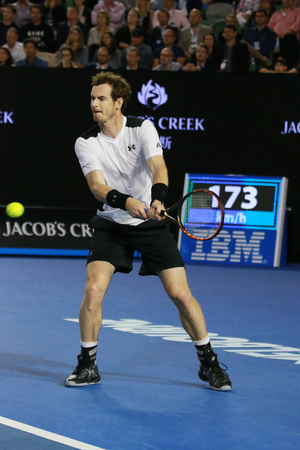 racket stadium: MELBOURNE, AUSTRALIA - JANUARY 29, 2016: Grand Slam champion Andy Murray of United Kingdom in action during his Australian Open 2016 semifinal match at Rod Laver Arena in Melbourne Park Editorial