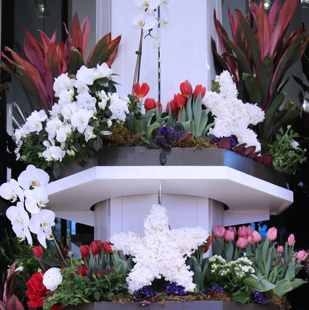herald: NEW YORK - MARCH 22, 2016: America the beautiful theme flower decoration during famous Macy s Annual Flower Show in the Macy s Herald Square in midtown Manhattan