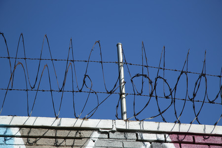 wire fence: Barber wire fence