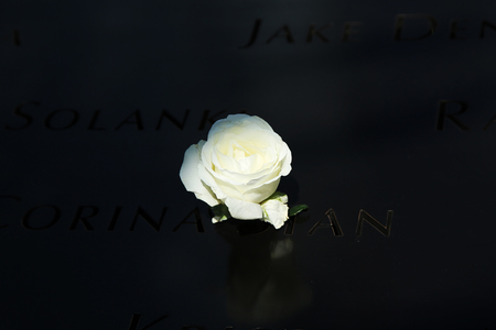 Flower left at the National 911 Memorial at Ground Zero in Lower Manhattan Editorial