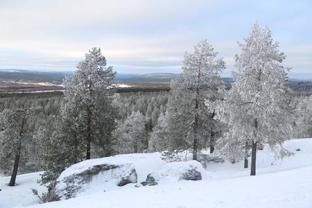 Beautiful winter landscape in Finnish Lapland Фото со стока