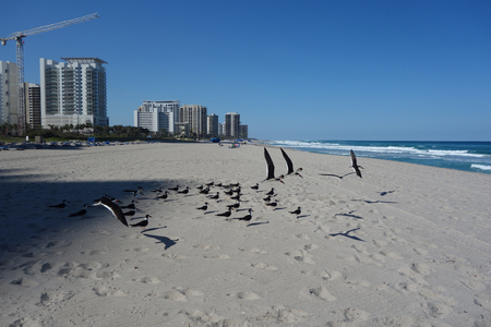 RIVIERA BEACH, FLORIDA - MARCH 20, 2018: Luxury condominiums at Singer Island, Fl. Singer Island an oceanfront neighborhood part of the city of Riviera Beach with natural beaches and upscale hotels