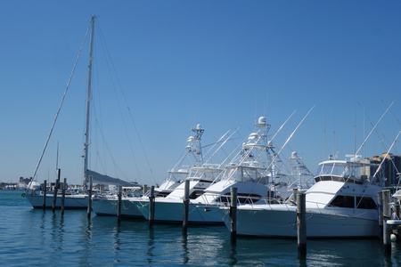 WEST PALM BEACH, FLORIDA - MARCH 21, 2018: Sailboats and yachts at Sailfish Marina in Florida. Sailfish Marina Resort is a favorite docking in the Palm Beaches 免版税图像 - 99673631