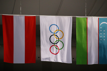 GANGNEUNG, SOUTH KOREA - FEBRUARY 12, 2018: Olympic and International flags in Gangneung Ice Arena during the 2018 Winter Olympic Games 에디토리얼