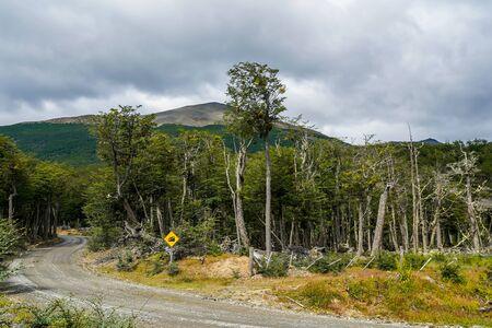 Local route in Tierra del Fuego, Argentina Stock Photo