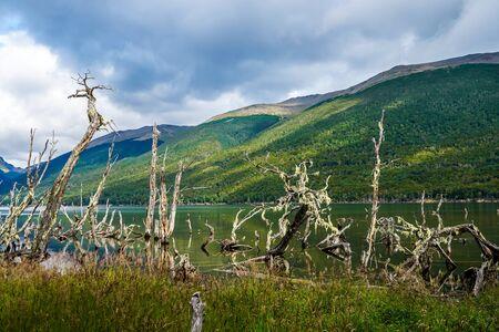 Lake Fangano in Tierra del Fuego