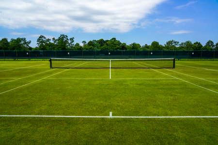 The grass tennis court