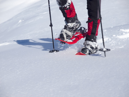 snowshoes: The man in snowshoes and with trekking poles. Stock Photo