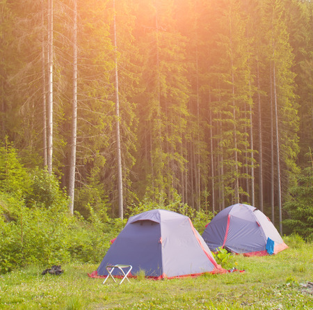 pitched: Two identical tents were pitched near the forest.