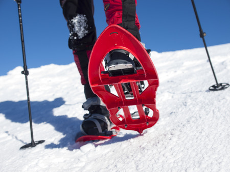 snowshoes: Snowshoes for walking in deep snow in winter.