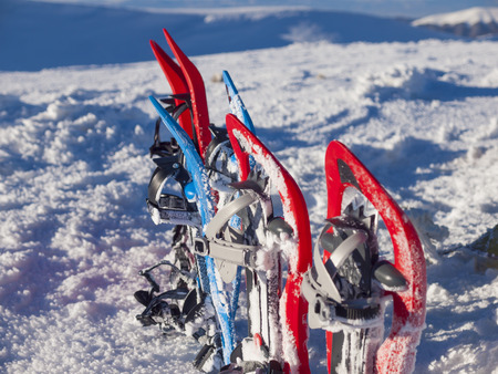 snowshoes: Snowshoes for walking on soft snow in the winter.