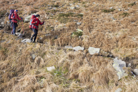 scarring: The girls go on a Hiking trail with backpacks. Stock Photo