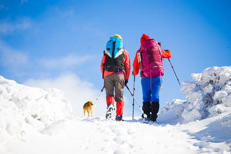 two girls are traveling with a dog in the mountains in winter, the snowy mountains during the winter holidays and mountaineering.
