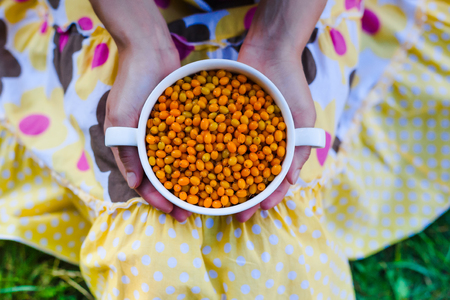 Bowl with orange sea buckthorn in female hands on a background of colored dress.