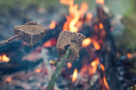 Rye bread is fried at the stake. Bread is strung on wooden sticks and is toasted at the stake. Picnic in nature. Rest in the open air. Cooking food in the forest.