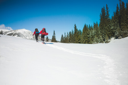 Two climbers are in the mountains in the winter against snow-covered fir trees, climbing two men with backpacks. Stock Photo
