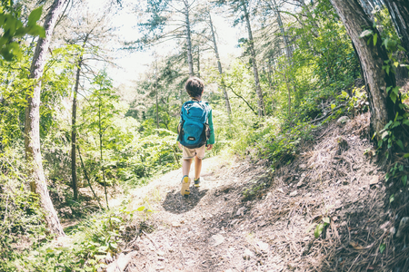 Child with a backpack in the forest. The boy walks along the mountain path. Active vacations. Traveling with children. The kid is studying nature. Fisheye lens.