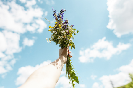 Bouquet of wildflowers against the blue sky. Beautiful sky with clouds. A woman's hand holds a bouquet. 免版税图像