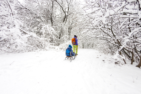 A woman is carrying a child on a sled. Mom walks with her son over the snow-covered forest. Cheerful winter vacation. Winter fun. Baby on the sleigh. Standard-Bild