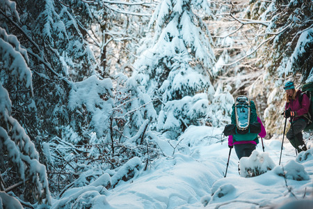 Two women in a winter hike. Girlfriends with trekking poles are on a snow-covered mountain path. Girls with backpacks and snowshoes travel together. Friends walk on a sunny day through the fir forest. Standard-Bild - 115854523