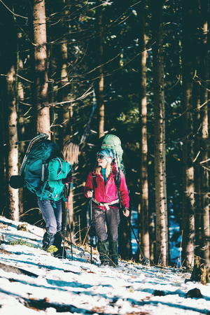 Two women in a winter hike. Girlfriends with trekking poles are on a snow covered mountain path. Girls with backpacks and snowshoes travel together. Friends walk on a sunny day through the fir forest.