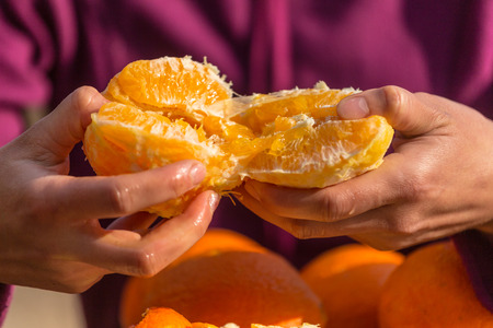 Oranges in female hands close up. Peeled citrus fruits. Woman peels oranges from peel.