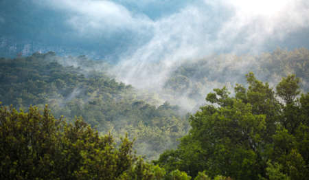 Low clouds over a mountain valley. Clouds fell on the mountains during the rain. The picturesque nature of Turkey.