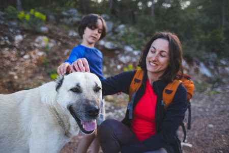 Woman stroking a big dog. Caring for animals. Family walk in the forest. Boy with mom walk a pet in the park. Portrait of a brunette with a pet. Faithful animal.