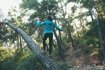 A woman walks along the trunk of a fallen tree in the forest. Girl catches balance. Walk through the woods.