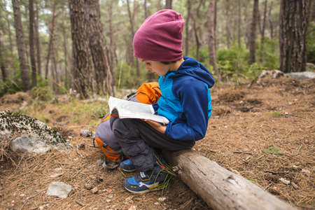A child is exploring the forest, a boy is looking for a location on a map, a hike in the mountains with children. Standard-Bild