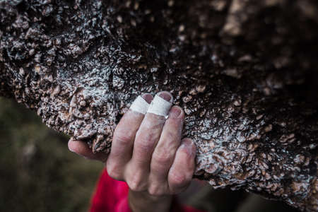 the hand of a strong climber holds onto a rock on a difficult route. sports and healthy lifestyle.