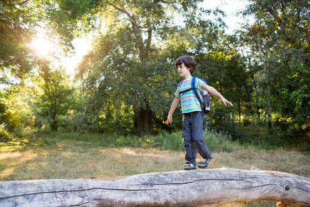 A boy with a backpack walks along the trunk of a fallen tree, a child walks through the forest, a kid is exploring nature, a boy learns to keep his balance. 版權商用圖片
