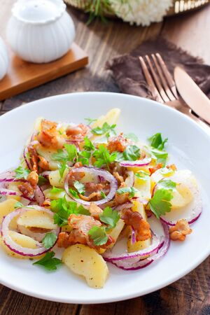 German potato salad with fried bacon, selective focus