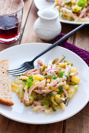 traditional german potato salad with sausage and pickled cucumbers, selective focus Standard-Bild