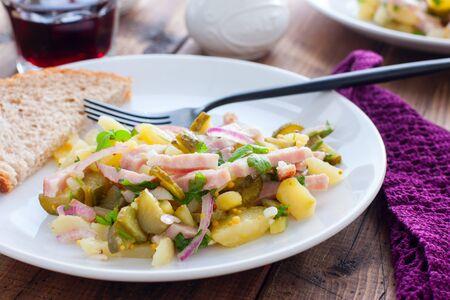 traditional german potato salad with sausage and pickled cucumbers, horizontal Standard-Bild