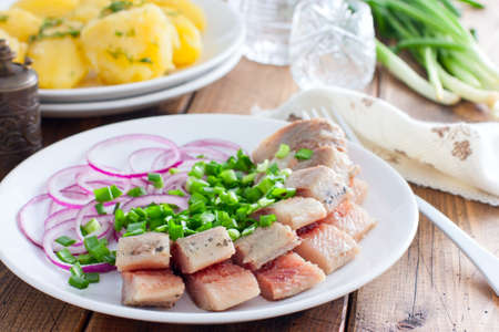 Homemade salted herring cut into pieces on a plate with green and salad onions, selective focus