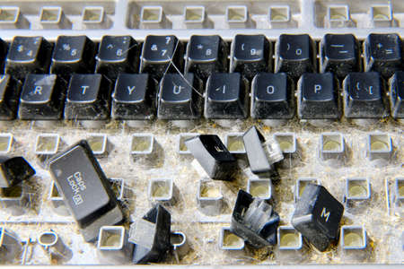 Disassembled keyboard with garbage inside prepared for cleaning
